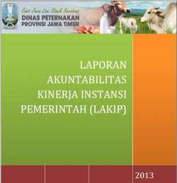 Cover Lakip 2013 A